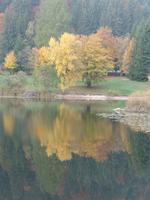 Foliage al lago di Cei